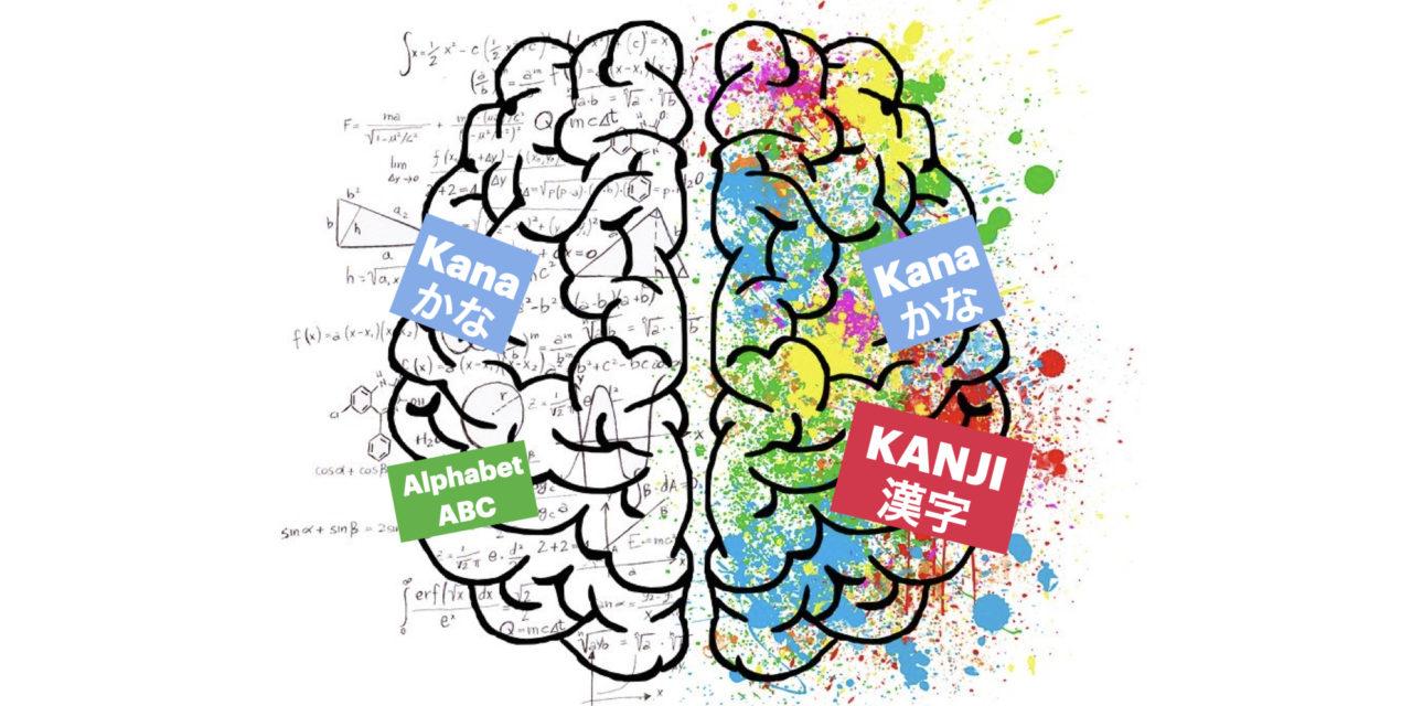 Apprendre le japonais : quels sont les effets sur le cerveau ?