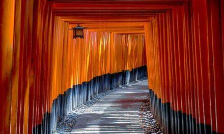 Saisir la différence culturelle entre le Japon et la France ?